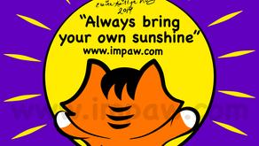 Nov 16, 2019 Always bring your own sunshine
