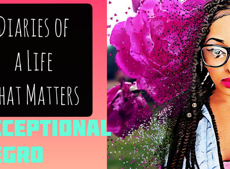 Diaries of a Life that Matters - EXCEPTIONAL NEGRO