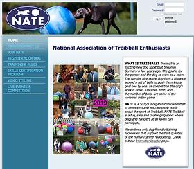 NationalTreibball.com.png