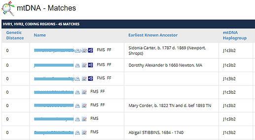 mtDNA_matches2.jpg
