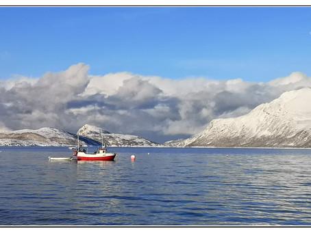 Norwegen - Mitten und zwischen den Schneestürmen