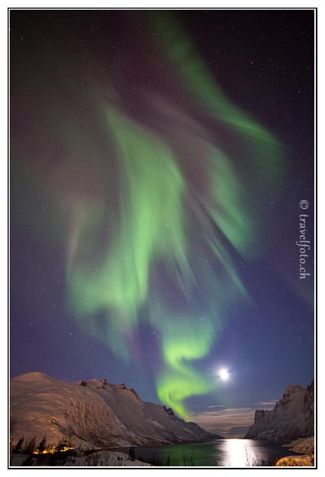 Polarlicht über Fjord