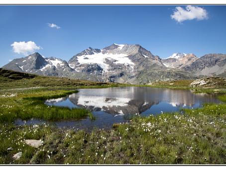 Berninapass und wo es noch Berberpferde gibt