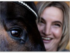 Pferde-Fotoshooting