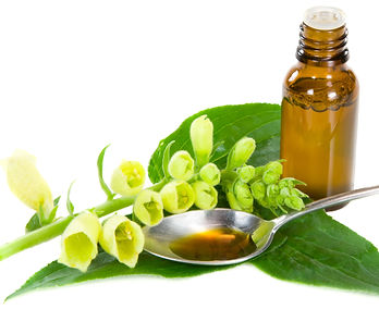 Homoeopathic & Allergy
