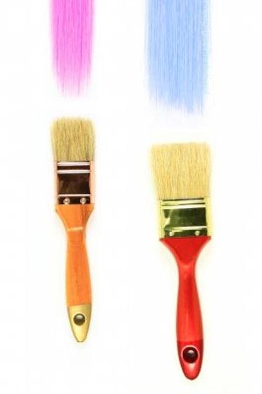the+brush.jpg