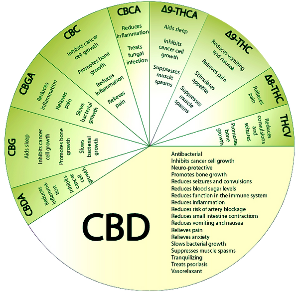 cannabidiol-effects-of-cannabis-cannabin
