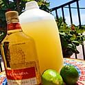 Gallon Margarita
