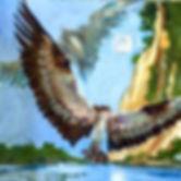 OspreyAtFonesCliffs.jpg