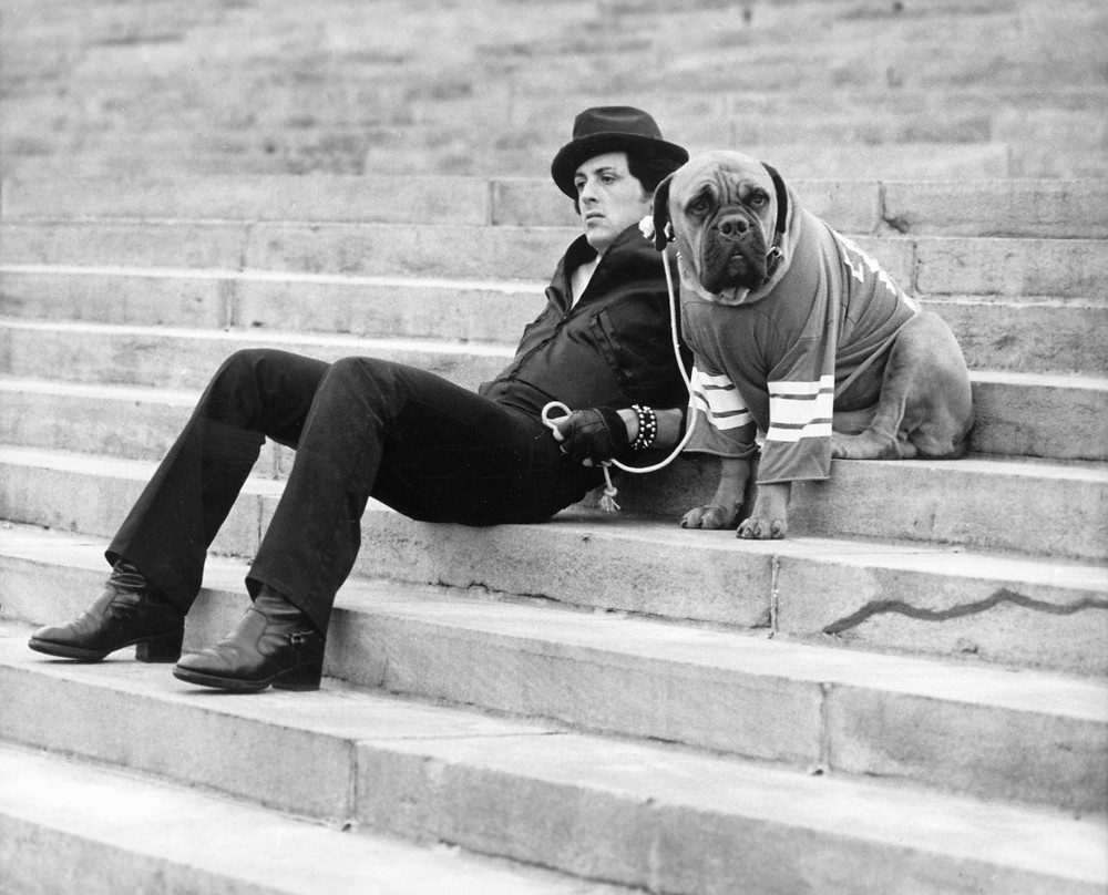 Rocky e seu cachorro na famosa escada na Filadélfia