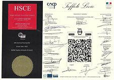 DIPLOME EAM HSCE Livio Toffoli.jpg