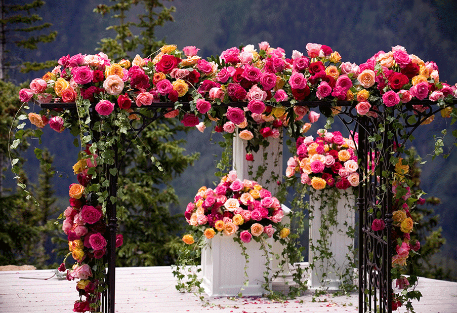 Lush Floral Arch
