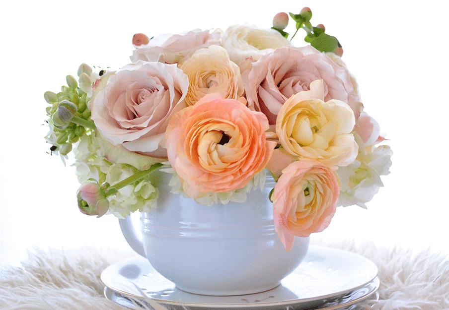 Creme Brulee Fleurs