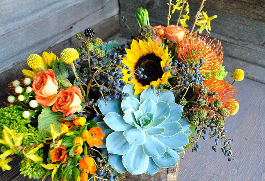 Sunflowers and Succulents 3
