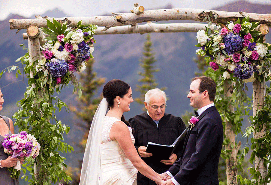 Natural Birch Log Chuppah