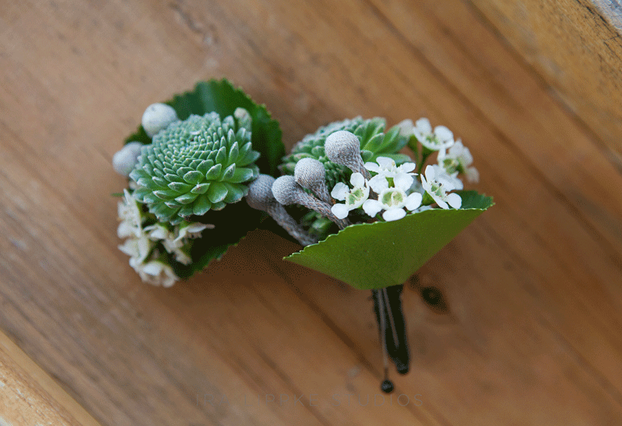 Succulents and Waxflower