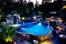 Gunite Pool w/ Swimout Bar