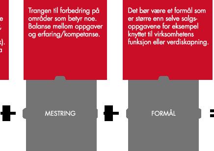 Ledelse og motivasjon av norske medieselgere