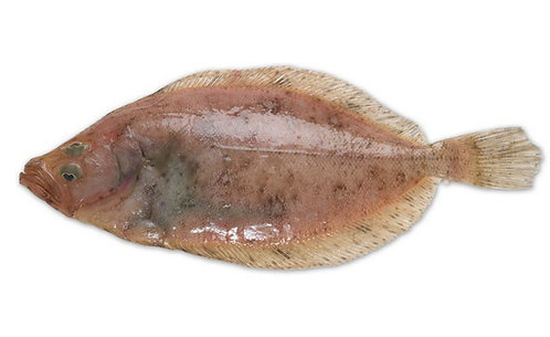 Lemon Sole Whole (200/400g)