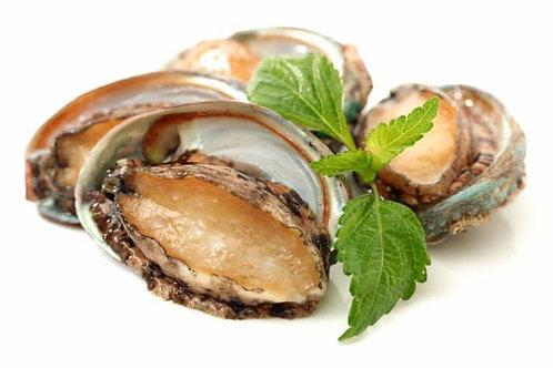 Tasmanian Seafood - Canned Wild Abalone 427g