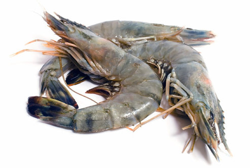 White Prawns Super Jumbo Whole /kg