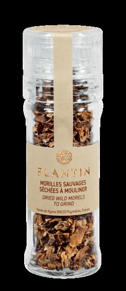 Plantin - Dried Wild Morels Mushrooms Mill 21g