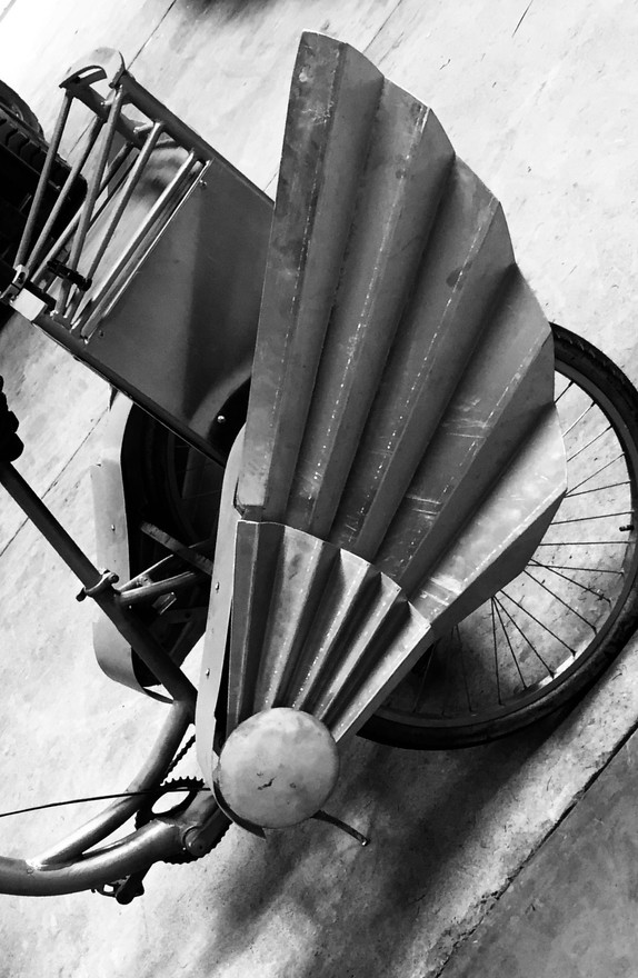 Bike Wings