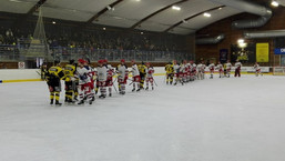 D2 : Belle victoire à Roanne (4-2)