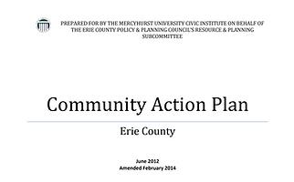 2015 Action Plan Image.PNG