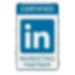 Linkedin%20Marketing%20Partner_edited.pn