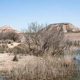 Desert de Bardenas Réales