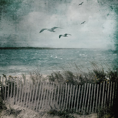 The Ocean in Winter Book Cover Art