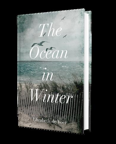 The Ocean in Winter by Elizabeth de Veer Book mockup