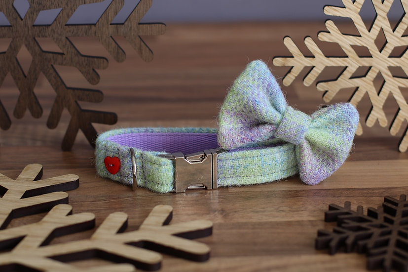 Small The Glendale Collar and Bow