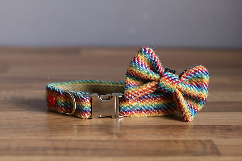 Small The Pride Collar and Bow