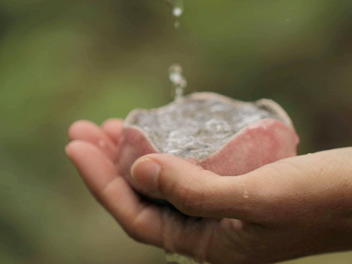 Réinventer le rituel du baptême : vers l'acceptation des cycles de la vie