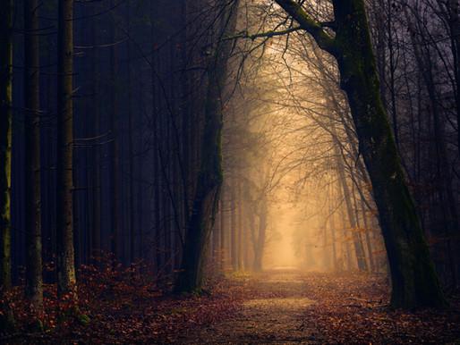 Un rituel pour Samhain
