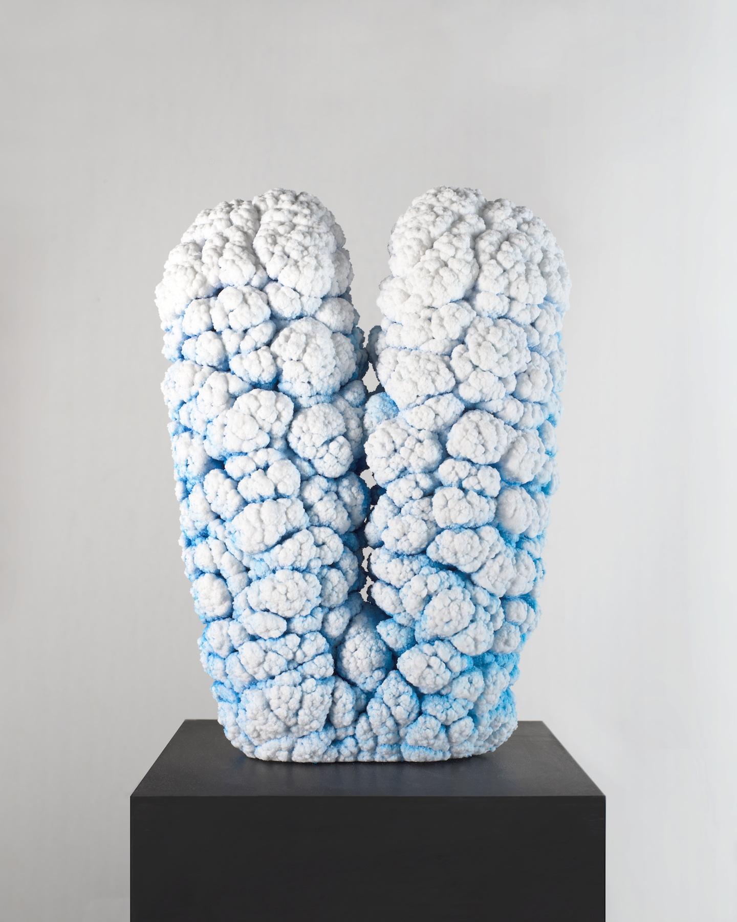 blue plaster twins