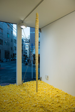 installation view at CC4441 Gallery