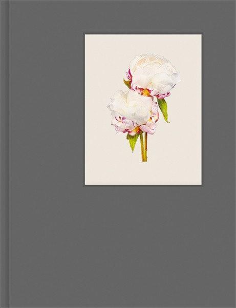 Kenji Toma 『The Most Beautiful Flowers』