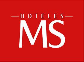 LOGO HOTELES C3-04.jpg