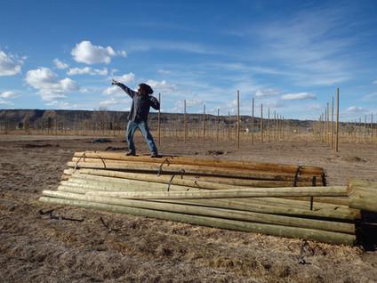 Finally poles! 20 ft long