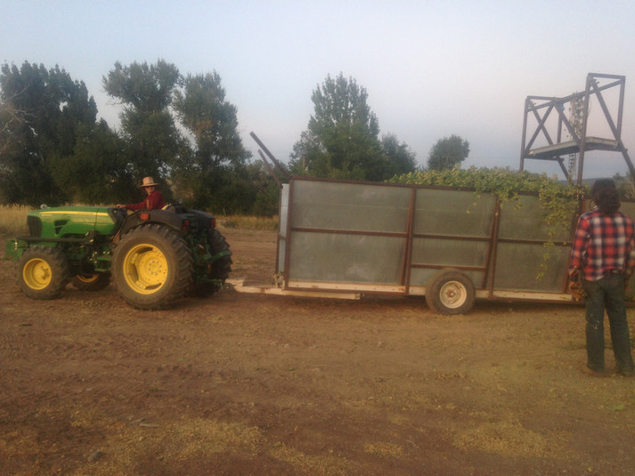 A full trailer load