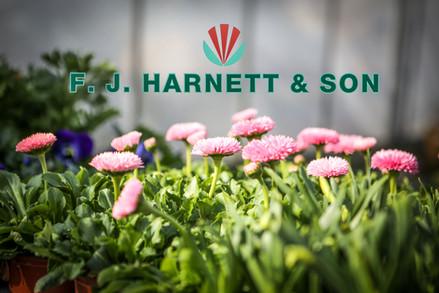 F.J. Harnett & Son - garden wholesaler in Stock, Essex