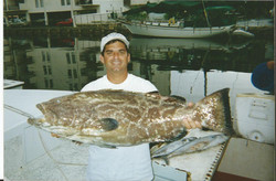BIG BLACK GROUPER