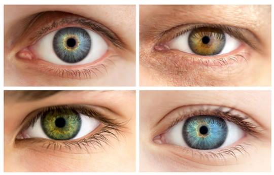 סוגי עיניים-קריאת תווי פנים
