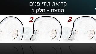 קריאת תווי פנים-הצורות השונות של המצח-חלק 1