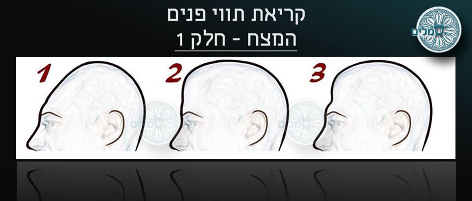 טיפים בשפת הגוף - האף