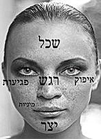 קורס קריאת תווי פנים-מרכז סמלים