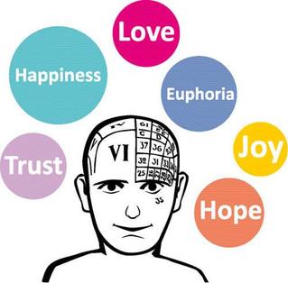 בחן את עצמך  מבחן בזיהוי רגשות ואינטיליגנציה ריגשית